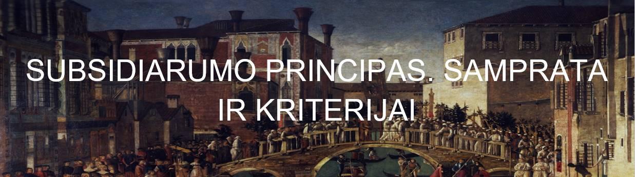 subsidiarumo principas